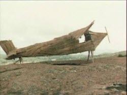 Melanesian bamboo plane