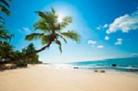 Beach_scene_resized