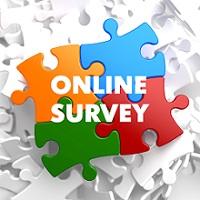 Colorful_puzzle_piece_survey
