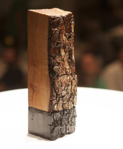Back side of the BPI Challenge 2015 trophy