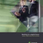 wp_banking-on-a-digital-future_en#11-1