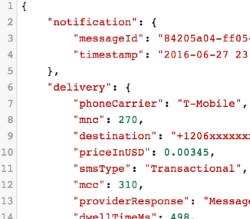 JSON extract of messaging payload