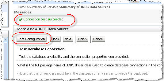 Test the connection to the database schema