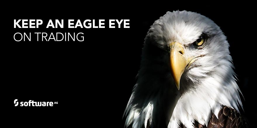 Using AI to Keep an Eagle Eye on Things