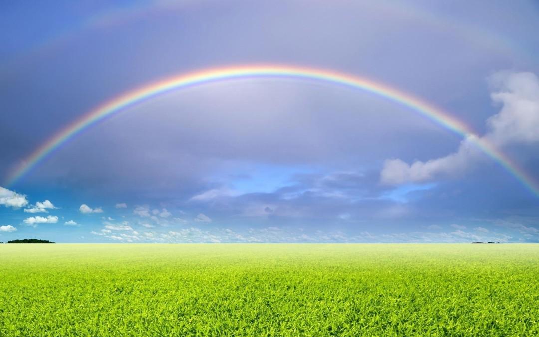 rainbow-d1df6cd05621d80408231eecdc2bcbea6c6d7515