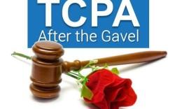 TCPA-After-the-Gavel-596x-f950d2afb4773bb08c8221d3fb61e1dc75fa43e8