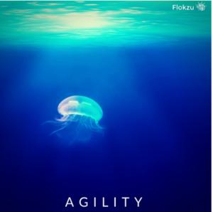 Cloud BPM Tools Comparison - Agility