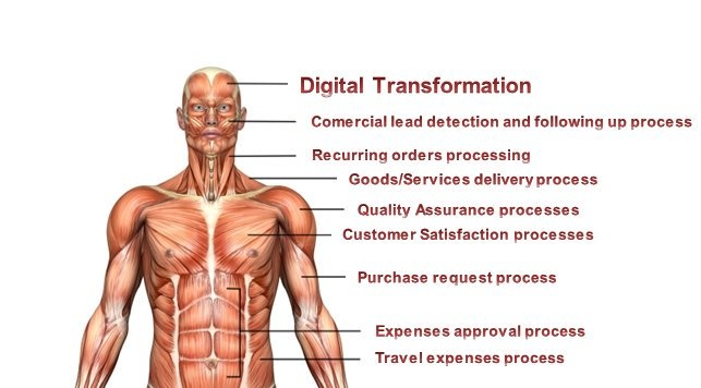 Digital Transformation starts in your mind. But your processes are your muscles. BPM.
