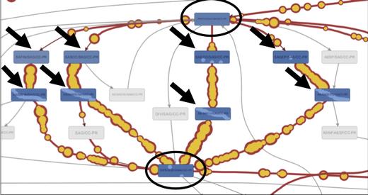 Figure 7: Processes in SAG