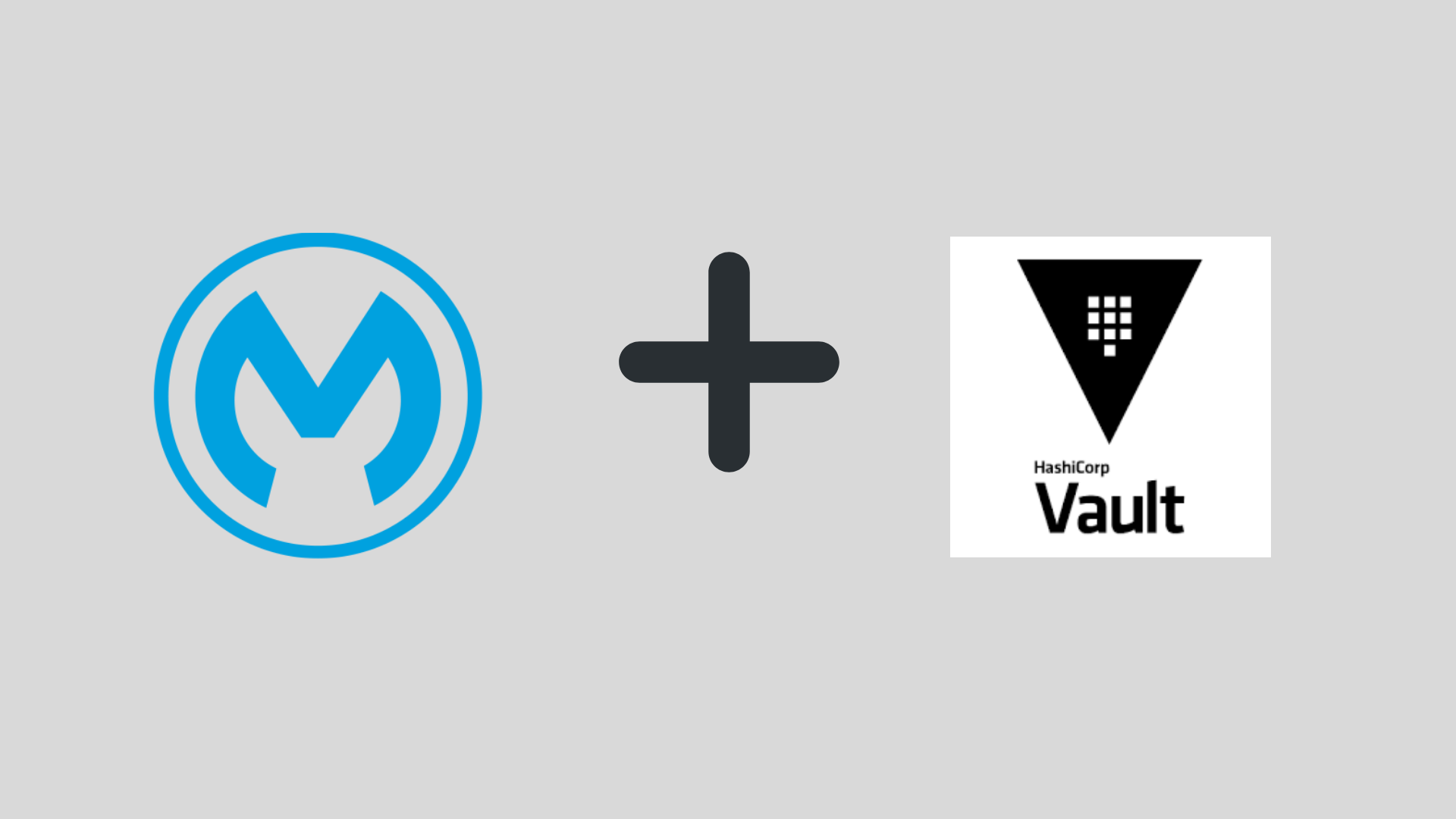 HashiCorp Vault Connector for Mule 4 - BPI - The destination