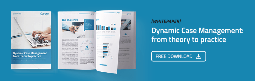 Whitepaper about Dynamic Case Management