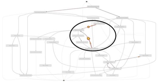 Process Mining Animation
