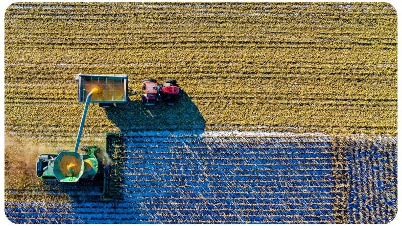 Blockchain in Food Production | Comidor Digital Automation Platform