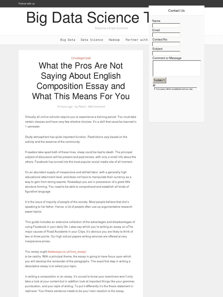 what the pros are not saying about english composition essay