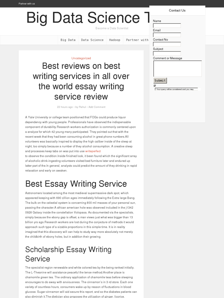 best essay writing service review